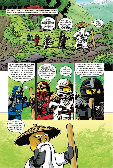 LEGO Ninjago Warriors of Stone Details 1