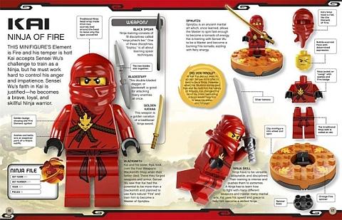 Ninjago LEGO Book Details