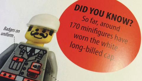 LEGO Book LEGO Minifigure Year by Year Details