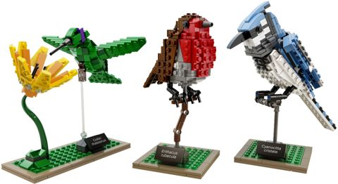 #21301 LEGO Ideas Birds