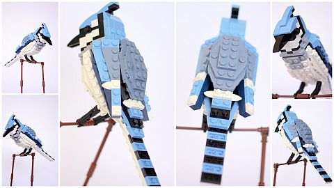 LEGO Ideas Birds Blue Jay