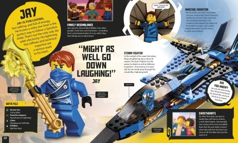 LEGO Books by DK Publishing Ninjago Secret World of the Ninja