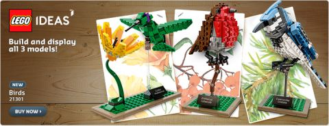 Shop LEGO Ideas Birds