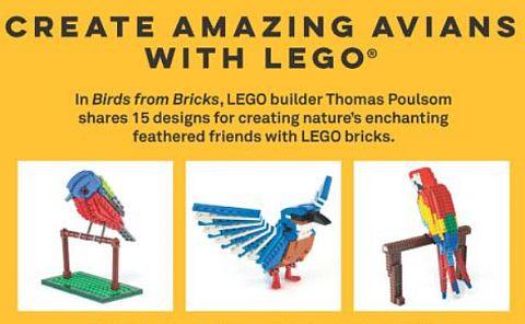 LEGO Ideas Birds Book 2