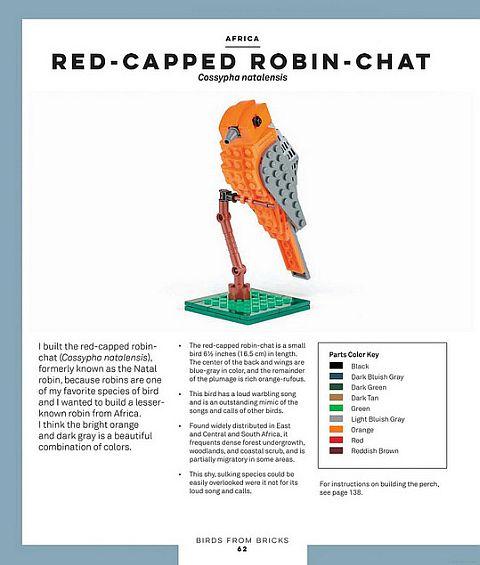 LEGO Ideas Birds from Bricks 1