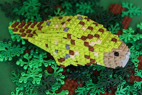 LEGO Ideas Birds from Bricks 7