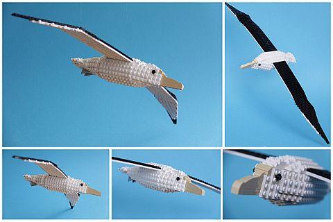 LEGO Ideas Birds from Bricks 8
